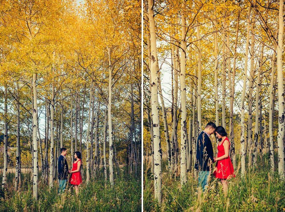 Aspen Colorado Vail Mountain Outdoor Engagement Photography-194